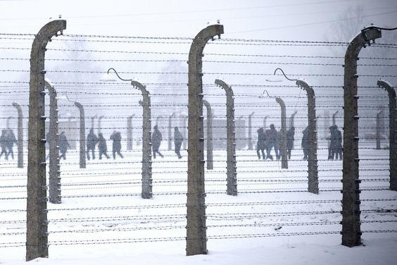 Vandaag wordt stilgestaan bij de bevrijding van nazi-vernietigingskamp Auschwitz. Er werden meer dan 1,1 miljoen mensen vermoord, voor het merendeel Joden. Op 27 januari 1945 bevrijdden soldaten van het Rode Leger het kamp. Zij troffen er ongeveer 6000 overlevenden aan. De officiële herdenking is vandaag in het voormalige kamp zelf, in Polen. Ongeveer driehonderd overlevenden zijn daarbij aanwezig, net als tientallen staatshoofden en regeringsleiders. Namens Nederland zijn koning ...