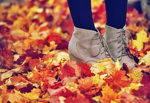 Why Fall Is The Best Season