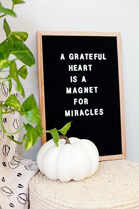 Amazon.com : Vintage Inspired Changeable Letter Board 12x18 inches with Alphabet and Oak Frame : Office Products