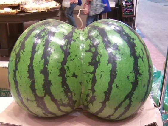 "This ""Oh my god, Becky, look at her…"" watermelon. 