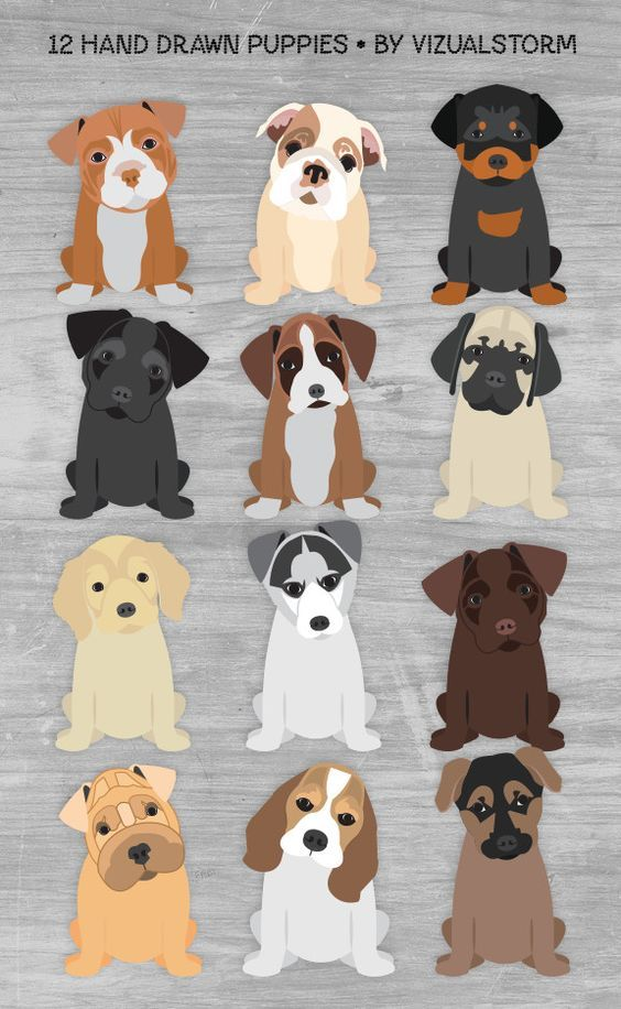 Hand Drawn Sitting Puppies Clipart Handmade Puppies With Tilted Heads Pitbull Labrador Retriever Bulldog Cute Png Puppy Dog Breeds Graphics Puppy Clipart Dog Quilts Dog Illustration