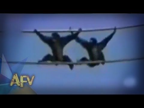 ★ Funny Animal Clips - America's Funniest Home Videos part 324 | Compilation | AFV