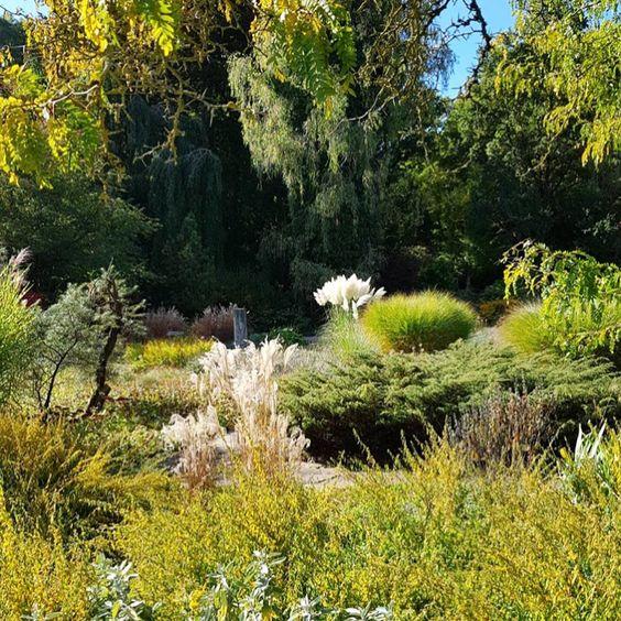 Botanischergartenaugsburg Ich Liebe Dieses Moderne Gartendesign Jewilderdestobesser Botanischer Garten Augsburg Garten Design Kleiner Garten Landschaftsbau