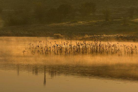 Morning has broken IV | Flickr: Intercambio de fotos
