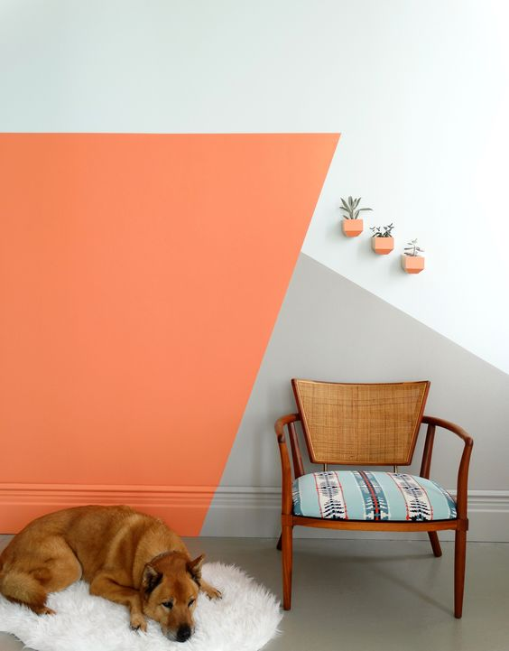 revestimento de parede e pinturas