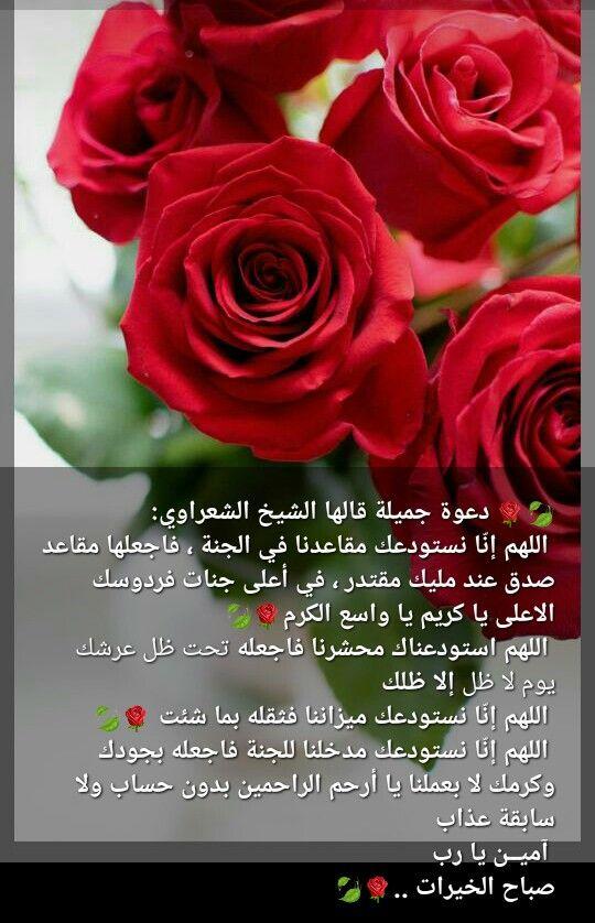 Pin By صل على النبي On صباحات ومسائات Good Morning Messages Romantic Love Quotes Morning Messages