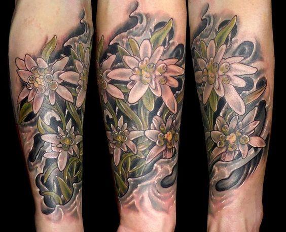 tatuaje flores edelweiss fondo biogenético sombra www.13depicas.com