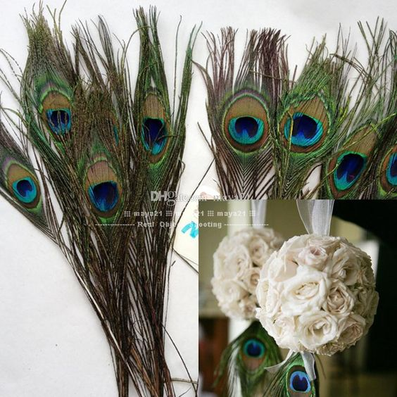 Wholesale natural peacock feather inchs plume