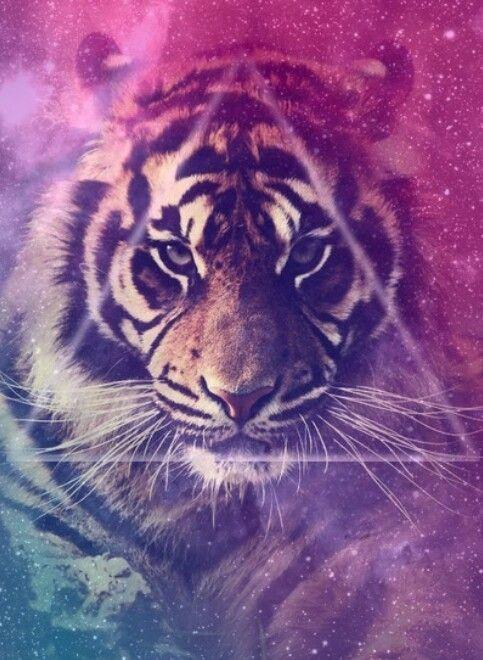 Lion tumblr background - photo#12