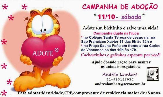 RJ: ADOÇÃO DE ANIMAIS NA TIJUCA NESTE SÁBADO (11/09)!