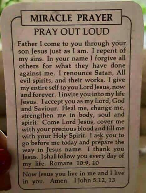 Holy Spirit prepare the way for me and let your will be done over my life