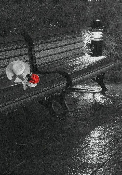touch of red on a rainy bench