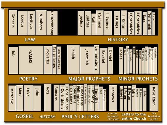 The Bible is a library ... we included an image similar to this ...