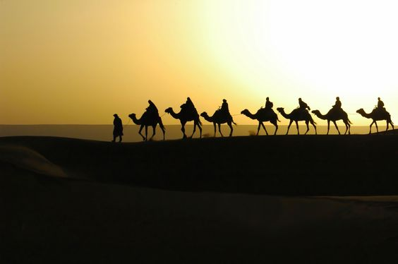 Taking the camel train in Morocco