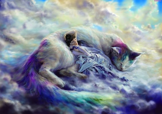 Kobieta, Śpi, Kot, Leżąca