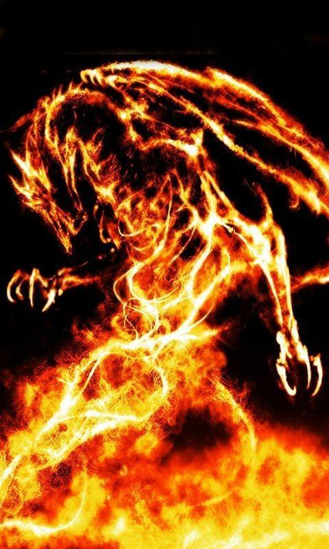 Feuepas Android Wallpaper Lion Images Fantasy Dragon