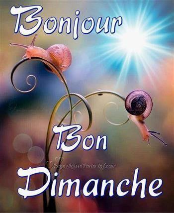 Liebe whatsapp französisch status französischer Liebesspruch