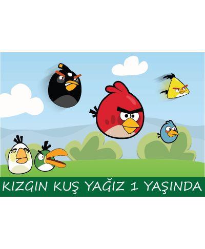 Erkek Doğum Günü Angry Birds Karakter Temalı Amerikan Servisi