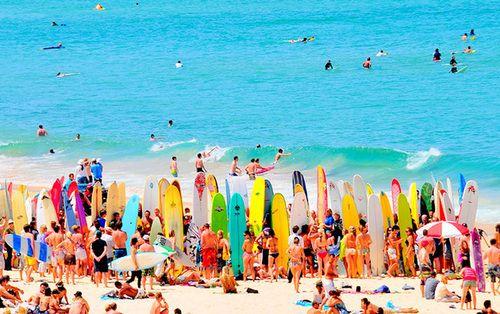 summer summer summer: Pink Summer, Life, Favorite Places, Surfboard, Sweet Summertime, Summer Lovin, Surf Boards, Spring Break, Beach Bum