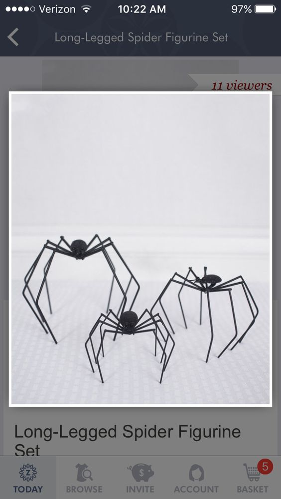 Stand up spiders!!!!  For front porch?
