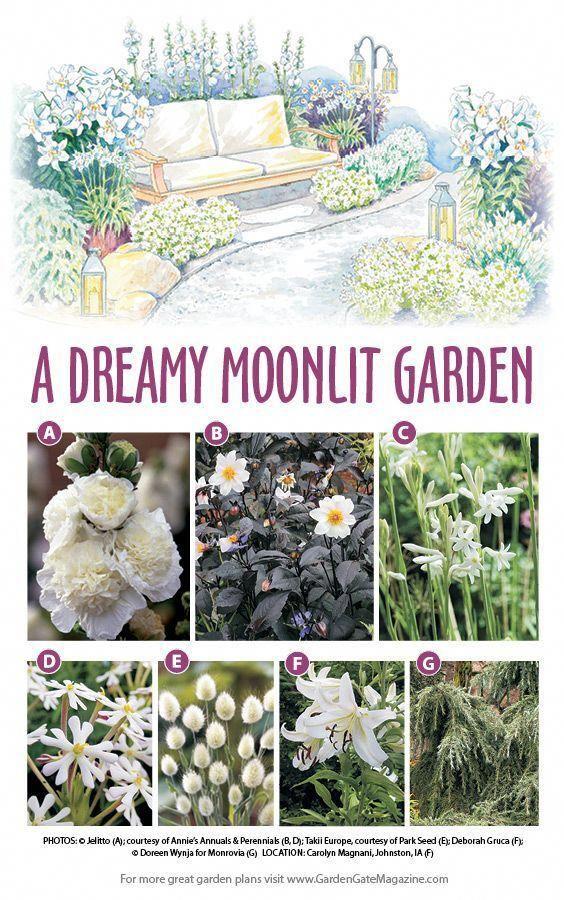 Flower Bed Designs Flowerbeddesigns With Images Moon Garden