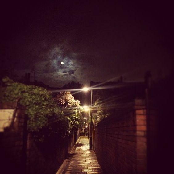 Night time on the ladder #harringaypassage #moon #alley #london #nighttime #penguins #mushrooms #hashtag