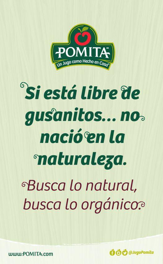 Si está libre de gusanitos… no nació en la naturaleza.  Busca lo natural, busca lo orgánico.