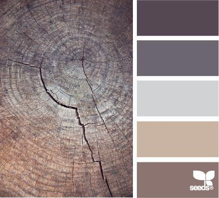 COLOUR INSPIRATION: Browns can be cool or comforting, rustic or rich - take your pick.  with <3 from JDzigner. www.jdzigner.com