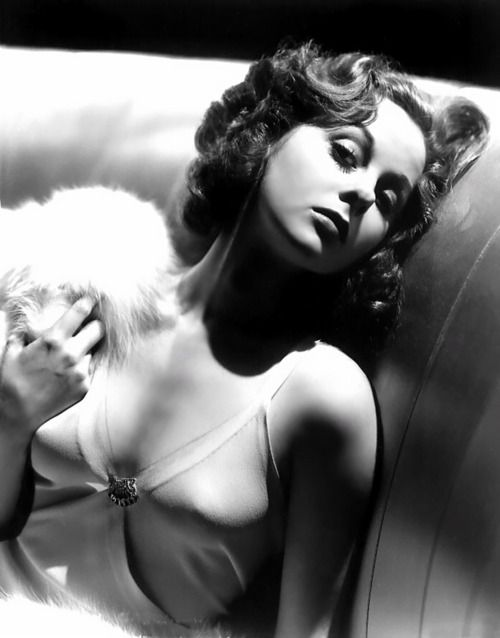I never really loved Susan Heyward..but wow, this is spectacular..(by the legendary glamour portraitist, George Hurrell).