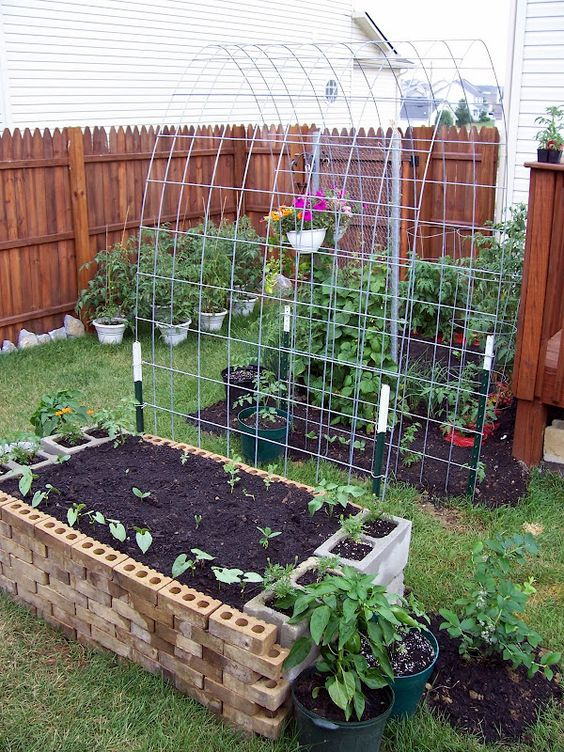 Awesome idea between raised beds for the tomatoes/beans to crawl up