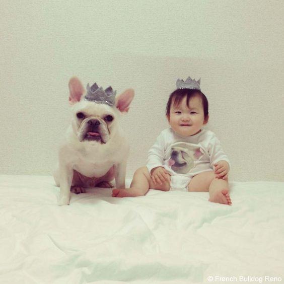 2歳の誕生日をお祝いしたよ♥️ #frenchbulldog #frenchie #dog #daughter #babygirl #happybirthday #フレンチブルドッグ #女の子 #誕生日