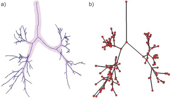 Image result for tree branch structure