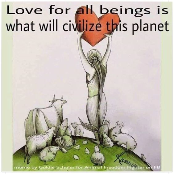 #love #vegan: