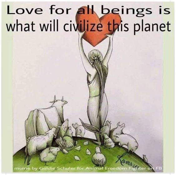 #love #vegan: