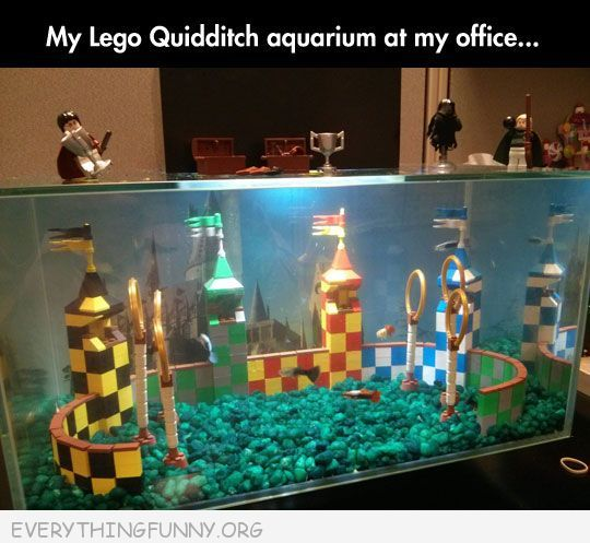 Best aquarium ever: