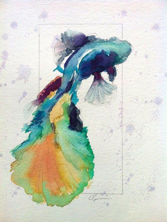 Colorful betta fish watercolor by clair hartmann original for Betta fish painting