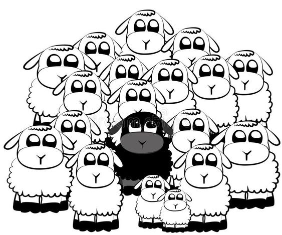 Black sheep. In a crowd of white sheeps , #SPONSORED, #sheep, #Black, #crowd, #sheeps, #white #ad