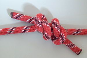 Three Knots you should know