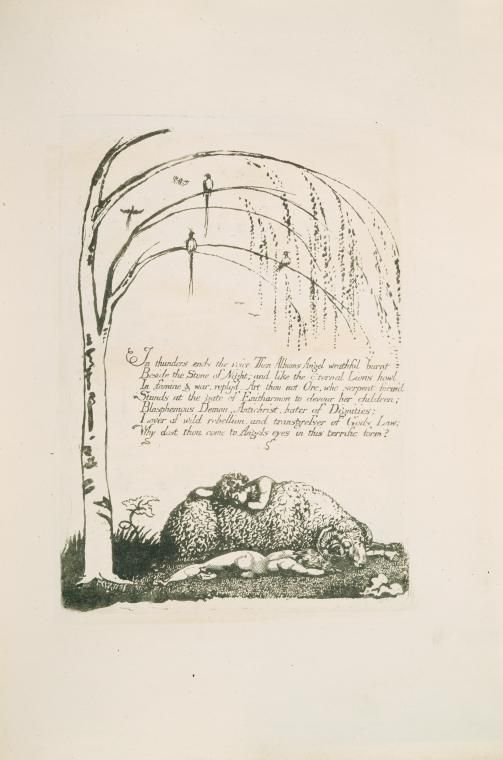 """In thunders end the voice..."". On Sleeping. William Blake"