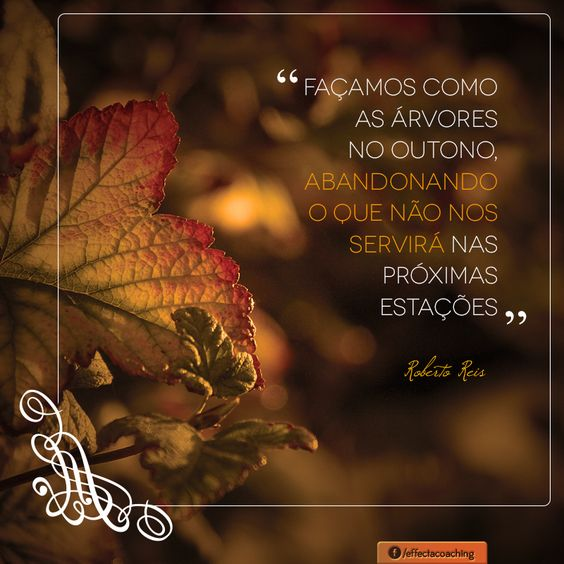 Seja bem vindo Outono, a estação das mudanças!