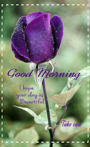 Good morning BEAUTIFUL!!!!!!!!!!!! I hope you slept well. I just woke up and am still laying in bed thinking of you. I wanted to wish you an AMAZING day!!!!!!!  Talk soon beautiful!