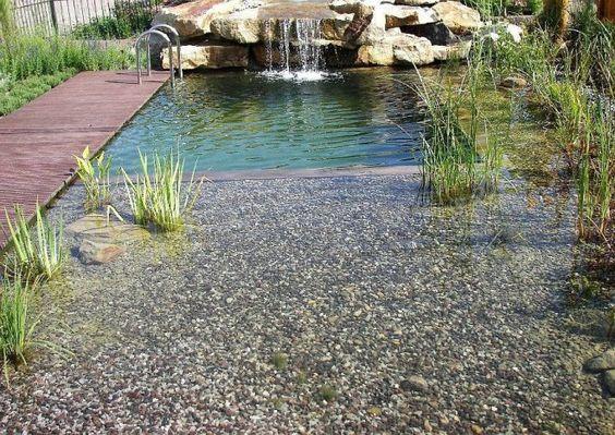 Schwimmteich! schwimmteich Pinterest Schwimmteich, Teiche - kunstfelsen selber machen