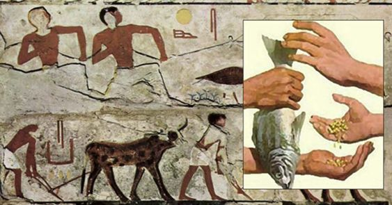 Life and Economic Systems in Pharaonic Egypt