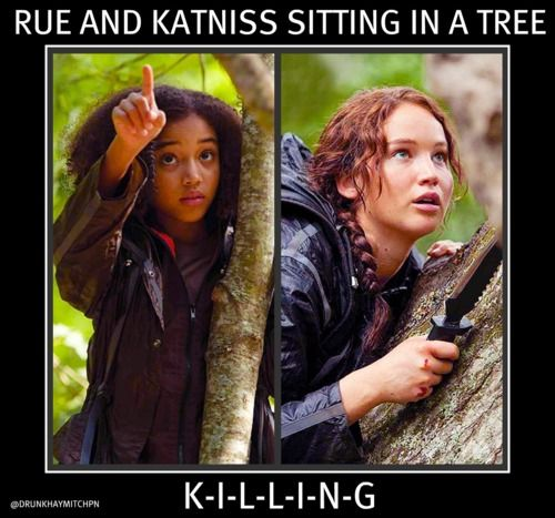 Hahaha! Oh how I love The Hunger Games :)