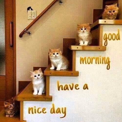 Have a nice day.: