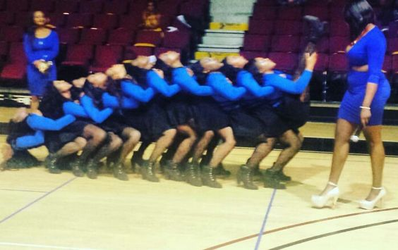 Omicron Pi Chapter of SGRHO Fall 2015 Troy University.