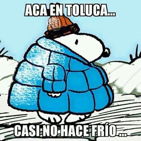 Pin De Yuri Flores En Snoopy Hace Frio Frio Memes En Espanol