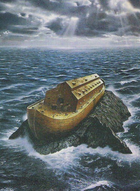 Noah found Grace: