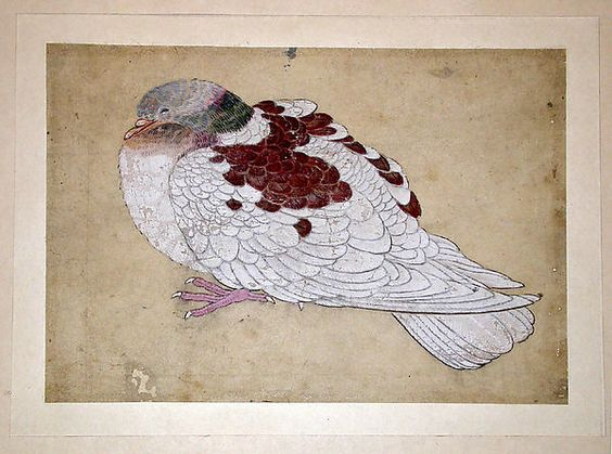 Bird. In the style of Ogawa Haritsu, Japanese, 1663-1747. Edo period. Japan. Watercolour on paper.