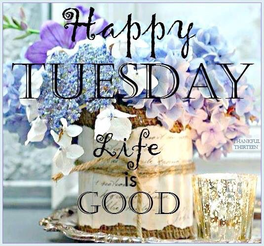 ♡☆ Happy Tuesday! ☆♡  Two weeks from today is the first day with my students for this school year!  Wow!